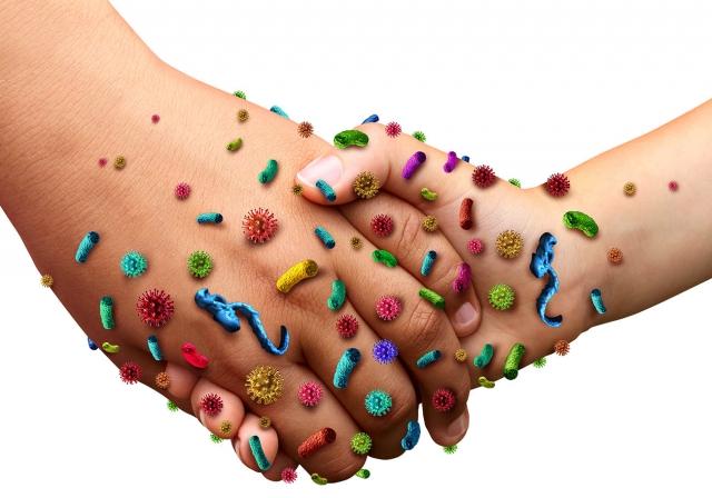 Бактериите – нашите добри приятели