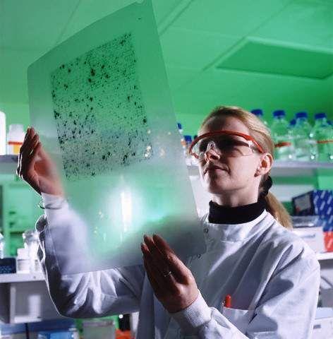 Генетичните аномалии са най-тежкото родителско наследство