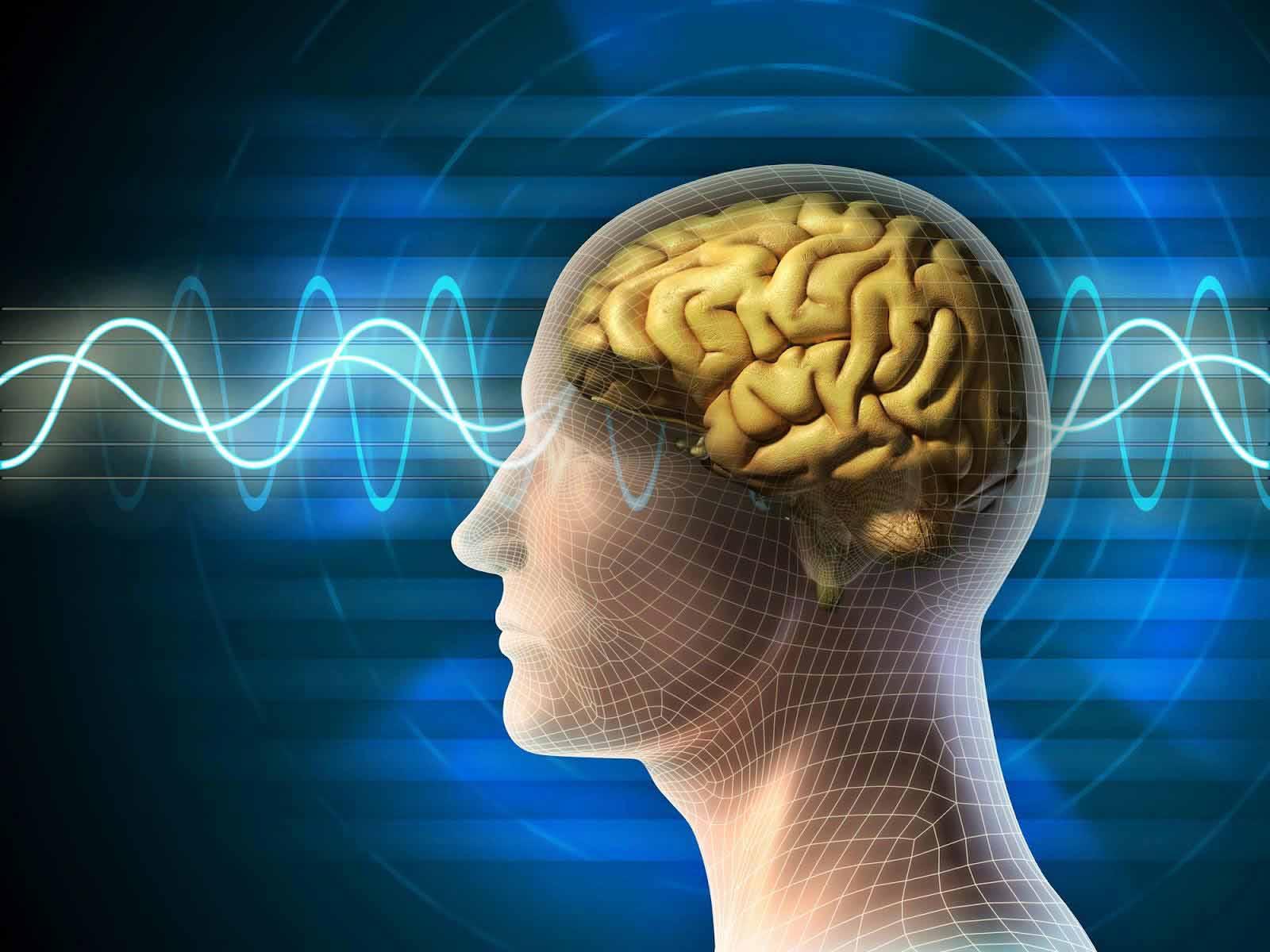 Съзнанието – продукт на мозъка ли е?