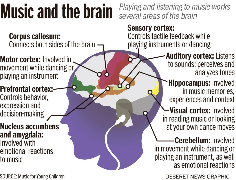 Как музиката влияе на мозъка