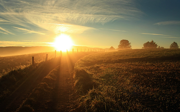 Утрото е по-мъдро от вечерта