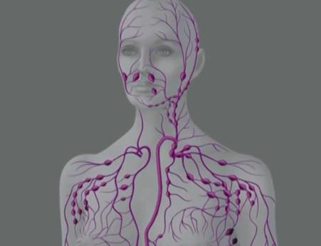 Прочистване на лимфата – единствения път към живот без болести.